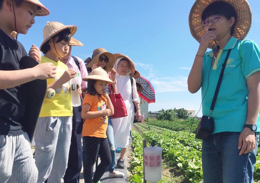 太陽能農場導覽解說