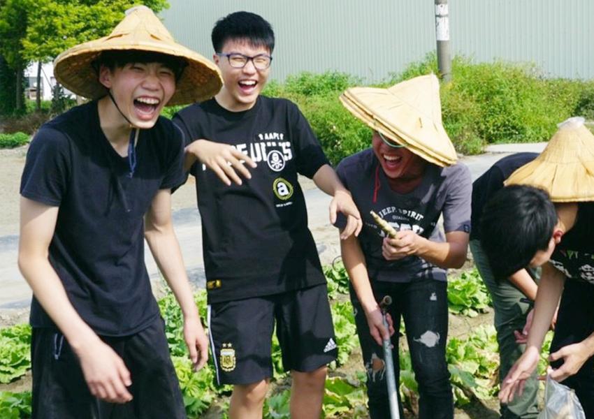 年輕人挖地瓜